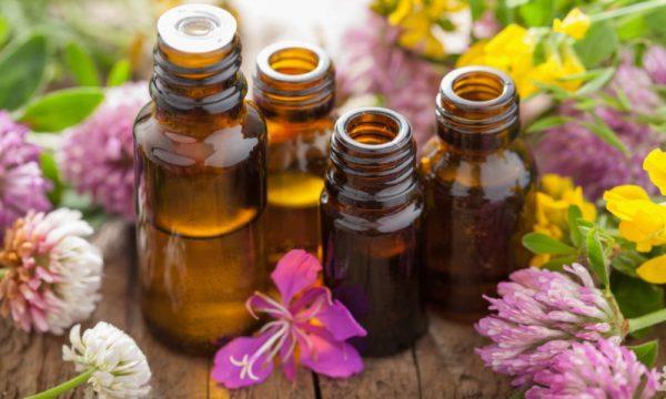 Народна медицина для лікування заїд
