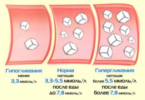 Норма цукру в крові
