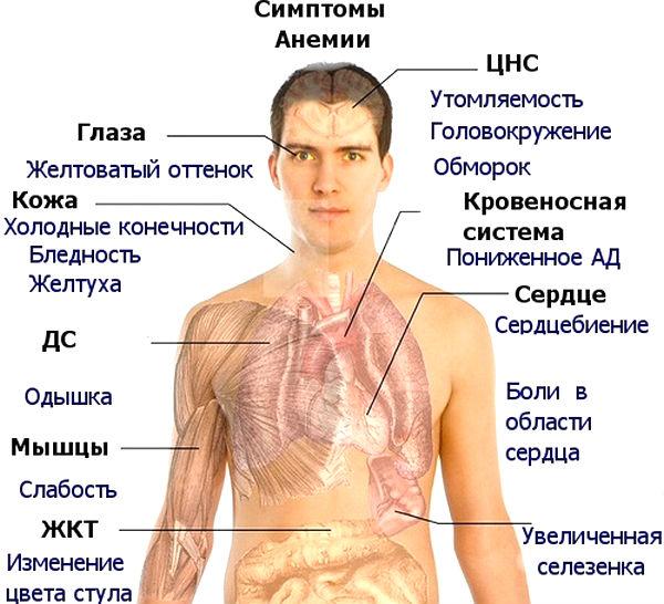 Симптоми дефіциту вітаміну В12