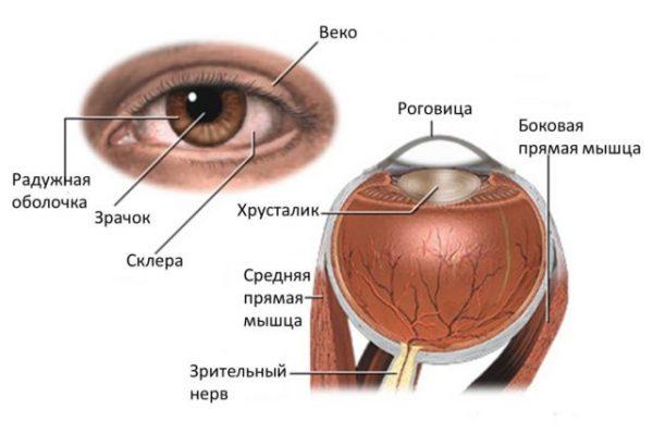 глаукома це