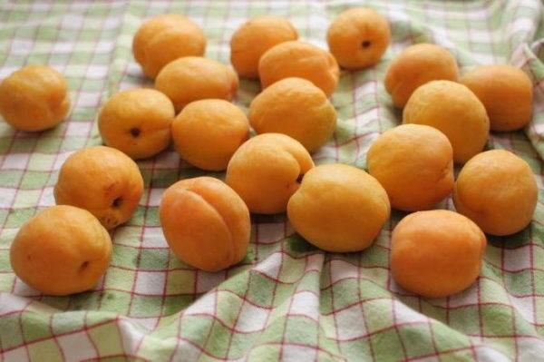 Заморожування цілих абрикос на зиму