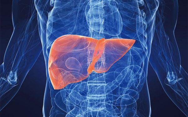 як очистити печінку