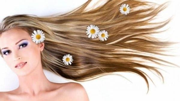 Ромашка для освітлення волосся