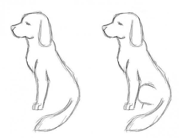 малюнки собак