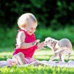дитина боїться собак