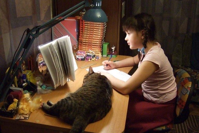 Дівчинка робить домашку з котом