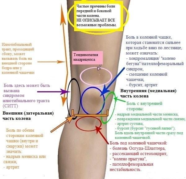 Як зміцнити колінний суглоб