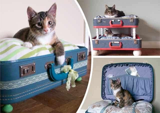 лежак для кішки з валізи