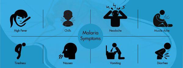 малярія симптоми