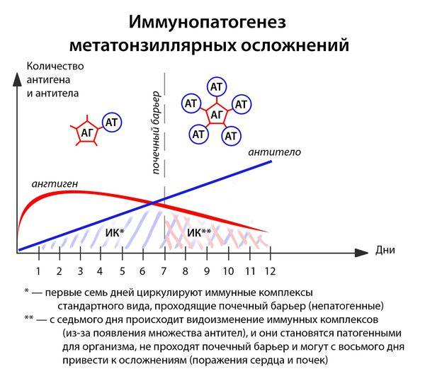 патогенез ангіни
