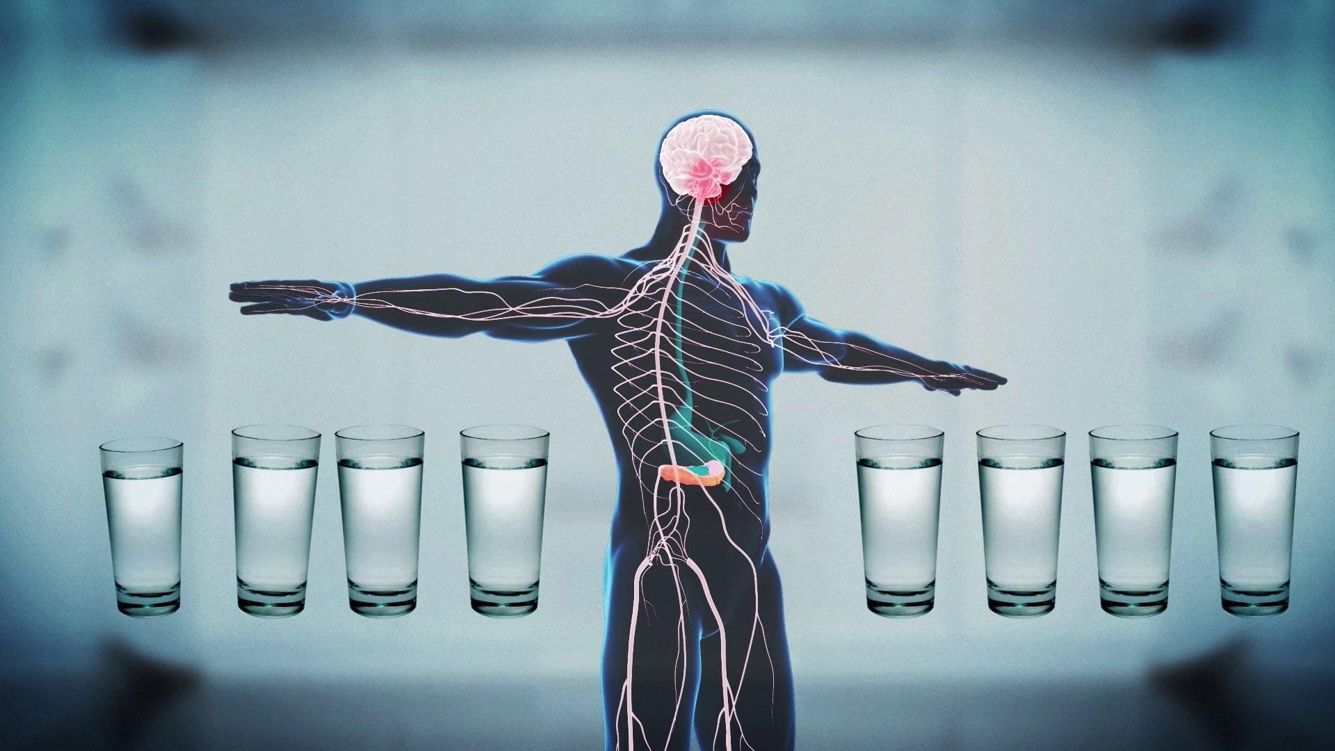 чи пити воду на ніч