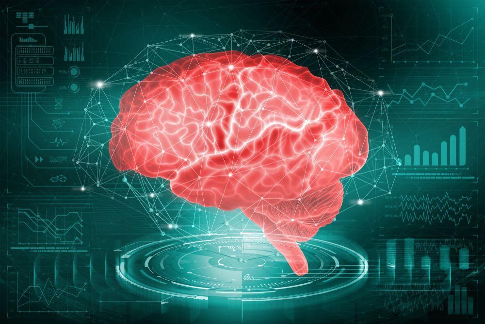 Загадки людського мозку