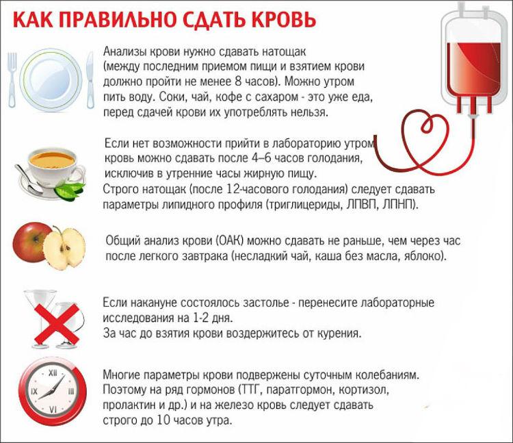 як правильно здавати кров