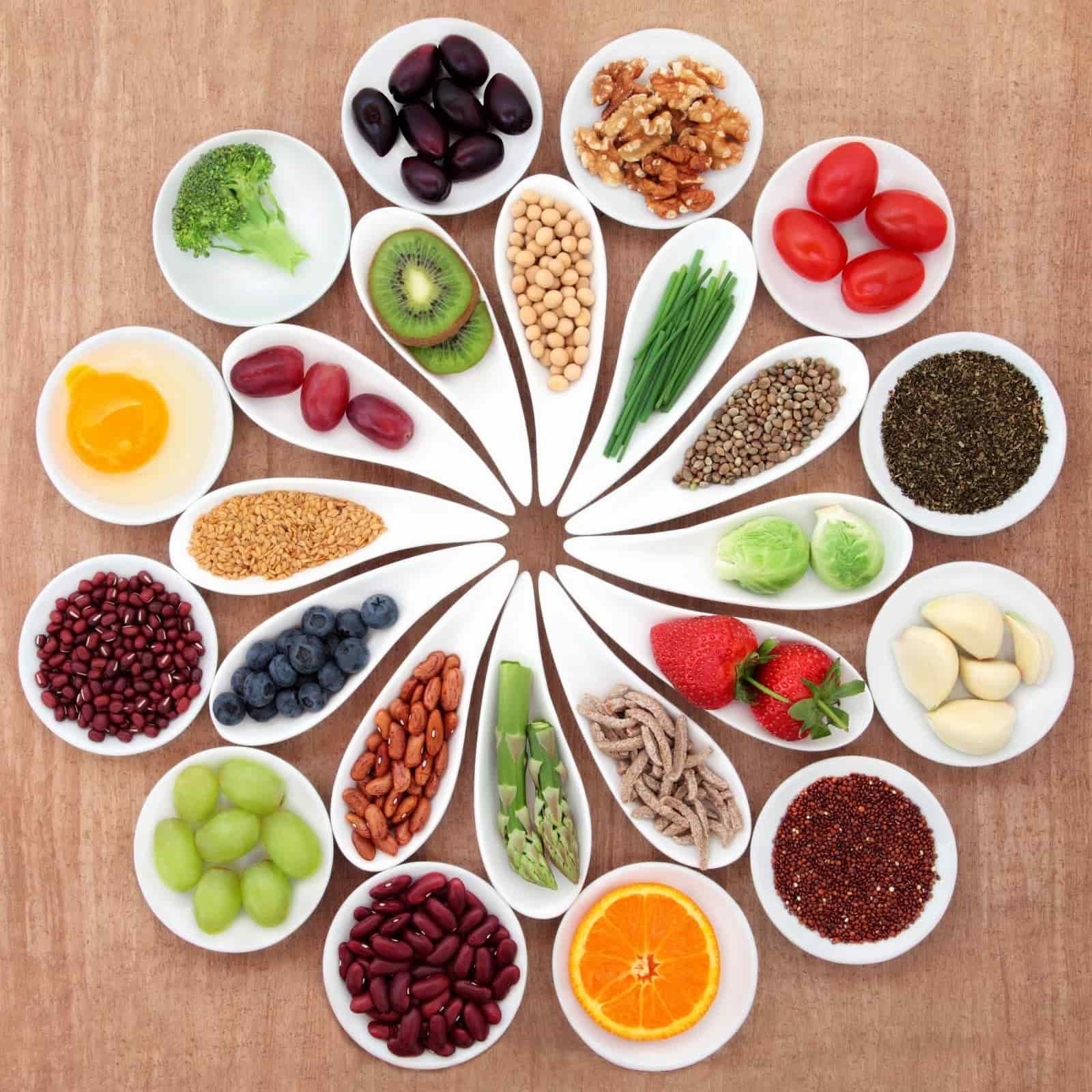 сироїдіння як система харчування