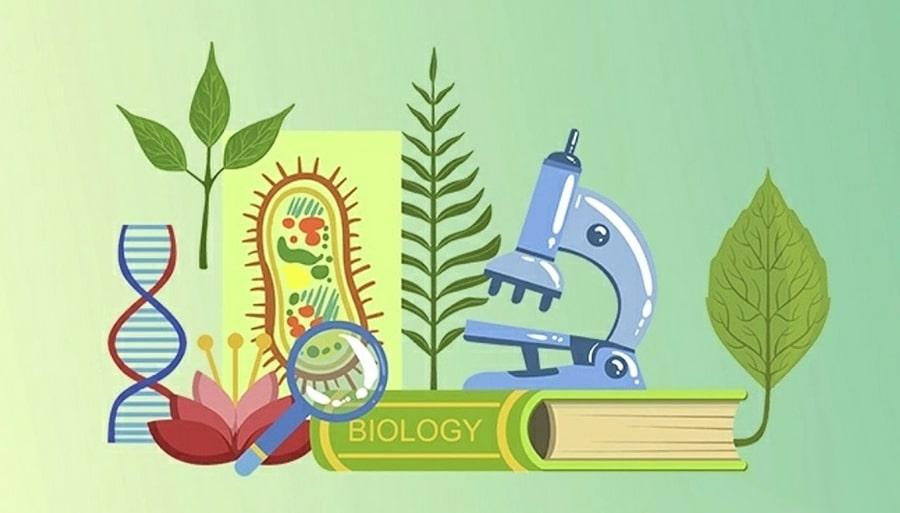 цікаві факти про біологію