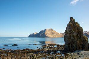Цікаві факти про Берингове море