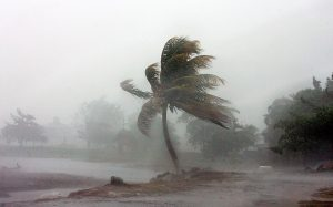 Цікаві факти про урагани