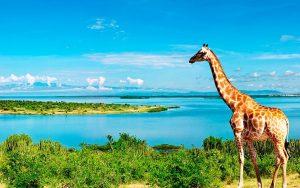 Цікаві факти про річки Африки