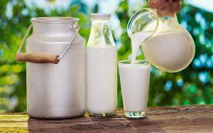 цікаві факти про молоко