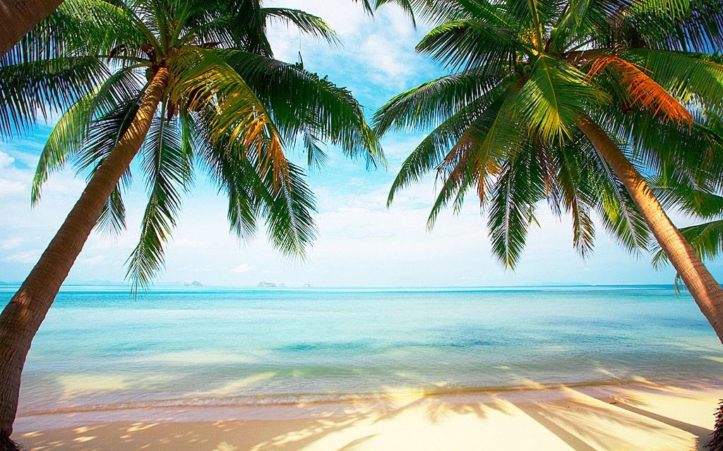 Цікаві факти про Карибське море