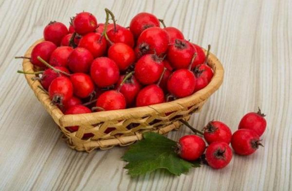 ягоди глоду корисні властивості