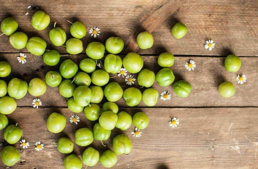 зелена алича корисні властивості