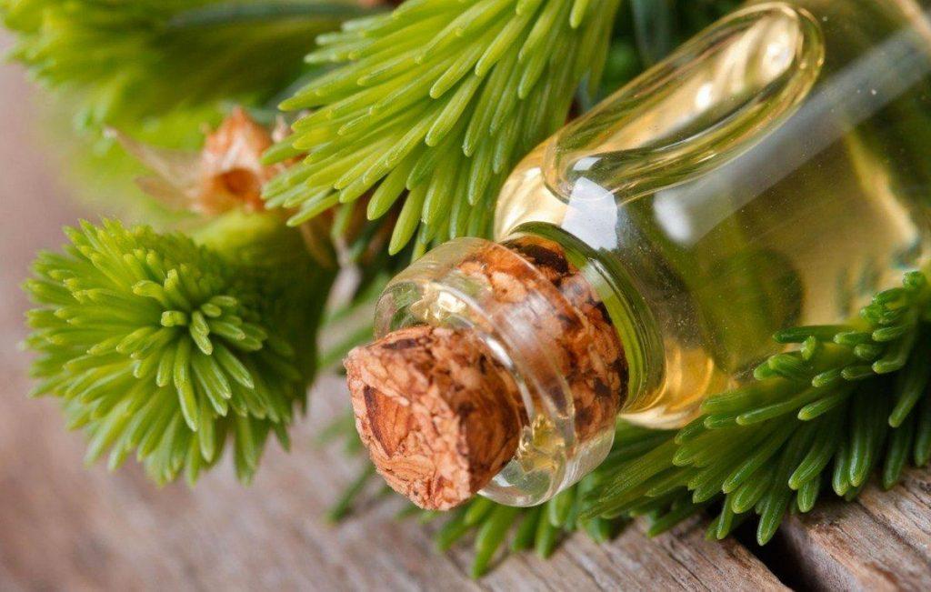 ялицева олія корисні властивості