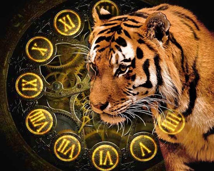 2022 рік якої тварини
